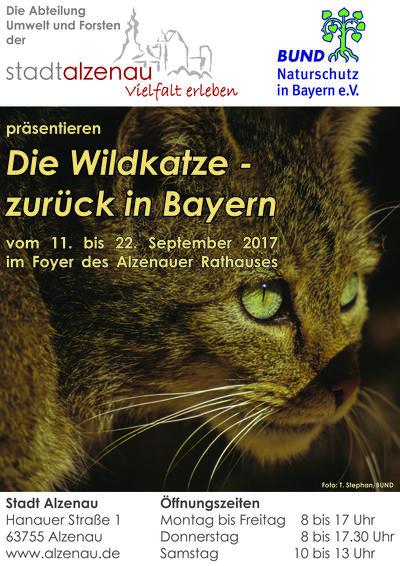 Die Wildkatze zurück in Bayern - Ausstellung vom 11. bis 22. September 2017 im Alzenauer Rathaus